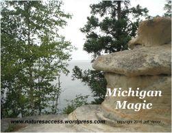 jyenior-michigan-magic