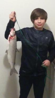 Aryn whitefish