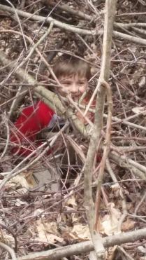 Shaun n trees